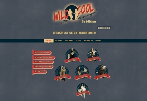 Swing as-en-danse stage